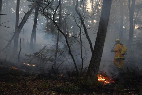 Firefighters in Beacon Falls approach a brush fire in 2016. Major wildfires have affected the West throughout 2020, although Woodbury fire chief Janet Morgan says major fires aren