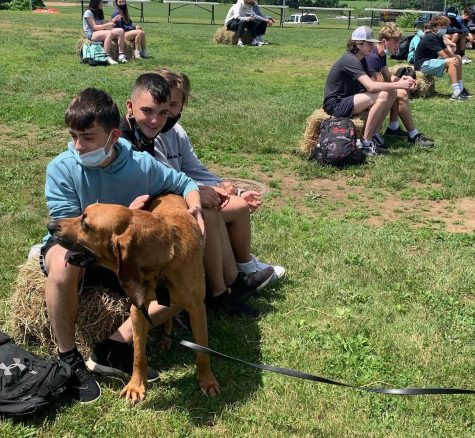Nonnewaug freshmen enjoyed a meet-and-greet with police K9 dogs after winning a contest to raise money to outfit a police canine with a protective vest. This was one of many service projects completed by Nonnewaug advisory groups this spring.