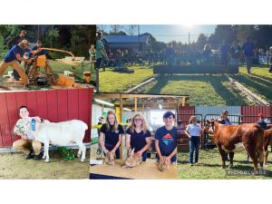 Coming Out of the Dust: Two New Ag Clubs