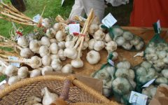 The Connecticut Garlic Festival will return to the Bethlehem Fairgrounds on Oct. 9-10.